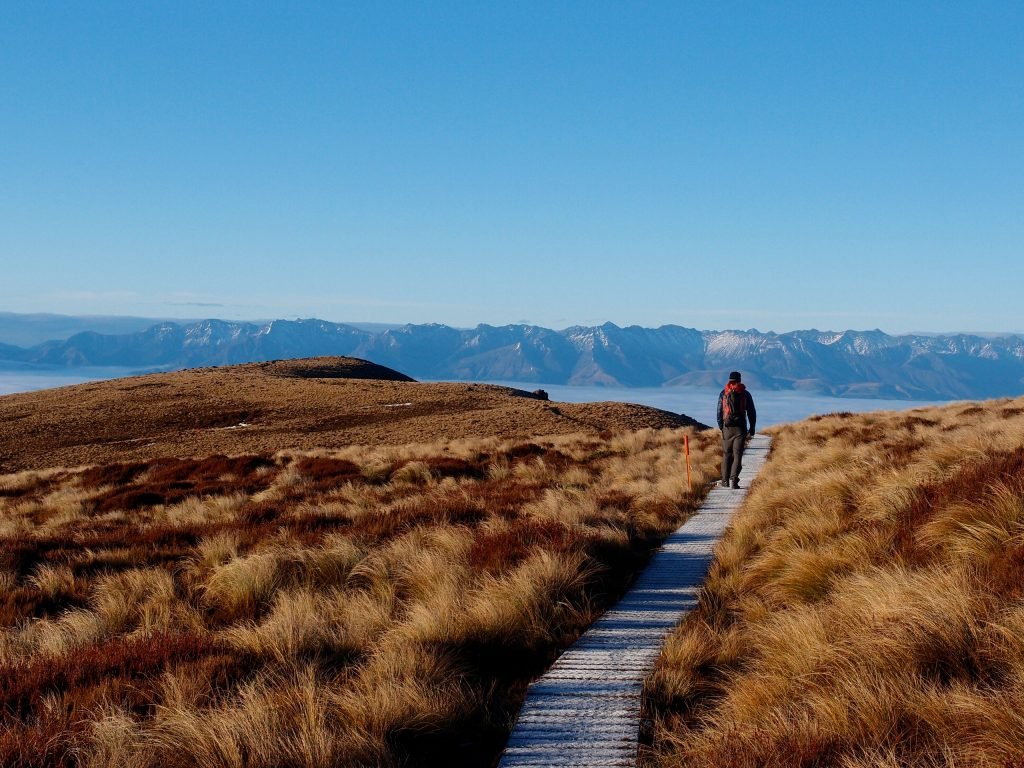 New Zealand's great walks in Fiordland