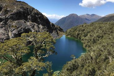 Fiordland-scenic-flight-mt-maury